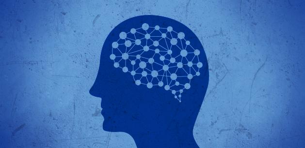 Imatge neurociencia